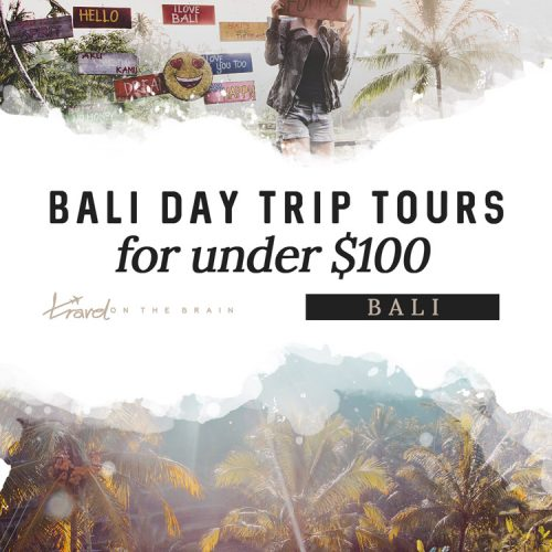 The Best Bali Day Trip Tours for under 100$