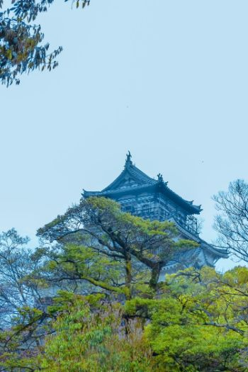 Hiroshima Castle partially hidden by lush green trees, Japan
