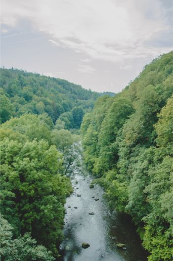 view from Elstertal Bridge, Germany