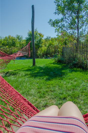 red hammocks in Hammock Grove, Governors Island NY