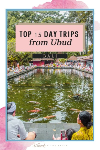 Top 15 Best Day Trips from Ubud