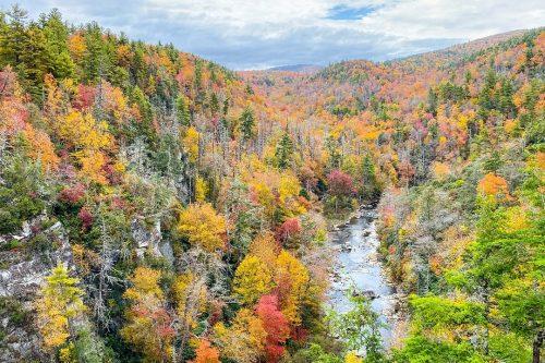 Fall colors at Burke, NC