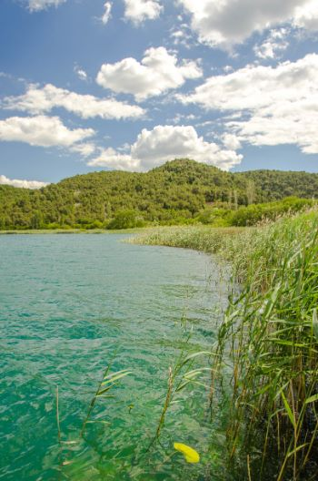 shoreline of Krka National Park, Croatia