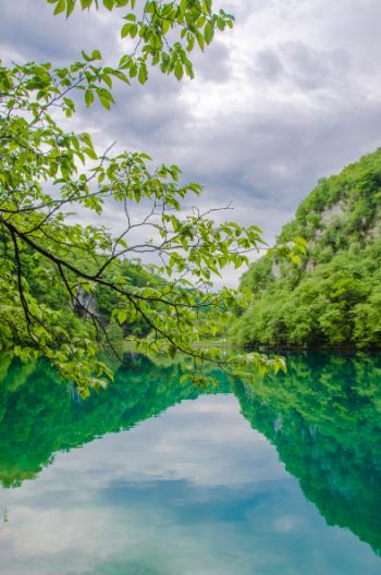 summer forest views over Plitvice National Park, Croatia
