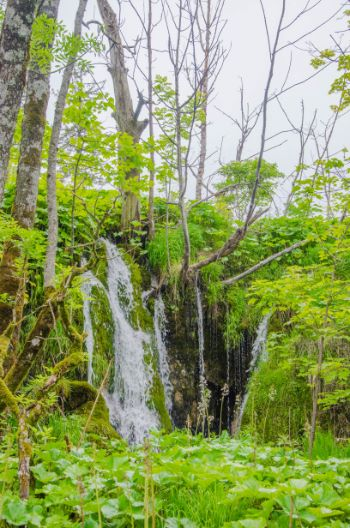 smaller waterfall in summer at Plitvice National Park, Croatia