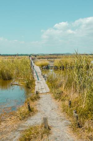 wooden path to the mud lake in Burgas, Bulgaria