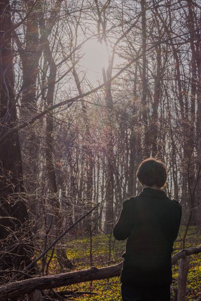 silhouette of a woman looking over winter aconites in forest