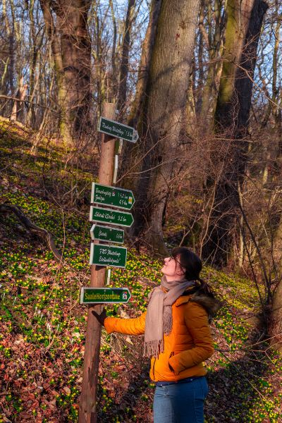 me with signs among winter aconites