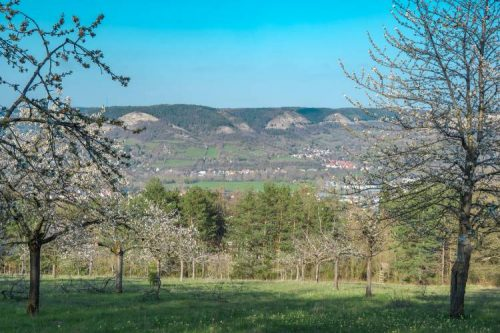 view over the hills in Jena