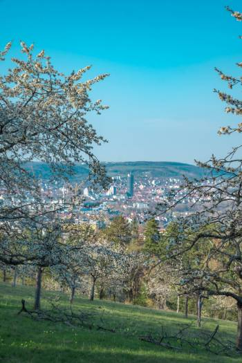 view over Jena from Winzerla