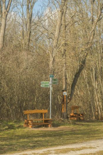 bench next to hiking signs in Jena