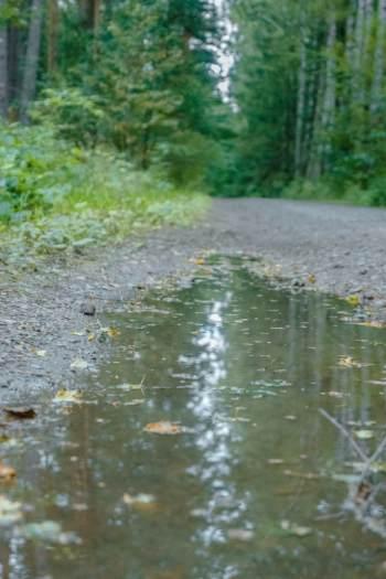 puddle on trail around Bad klosterlausnitz