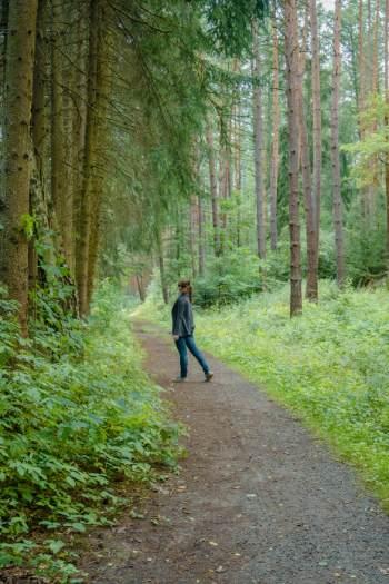 me among pine trees in Bad Klosterlausnitz